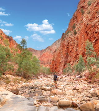 Join the ShelterBox Australia Larapinta Trek