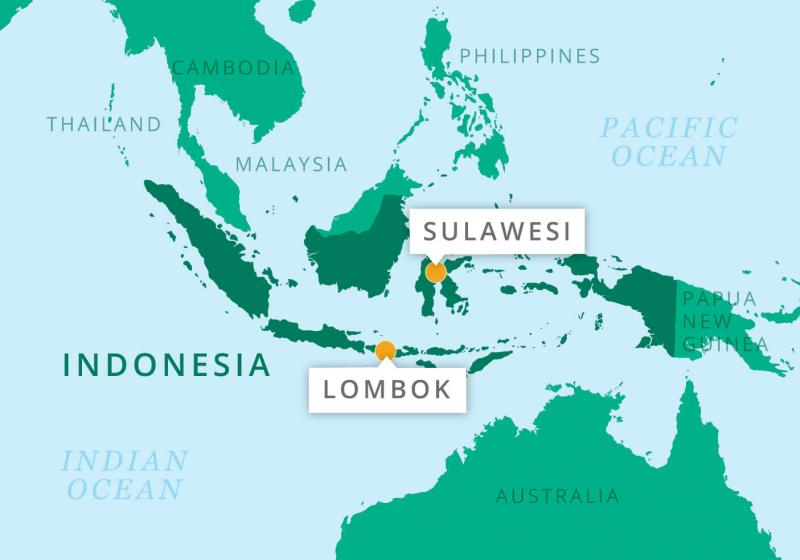 Sulawesi and Lombok